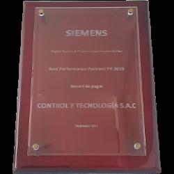 Best Performance Partner 2015 - Siemens